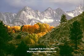 nature photography workshop california photo
