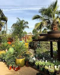 14 best polehill nursery sevenoaks images on pinterest garden
