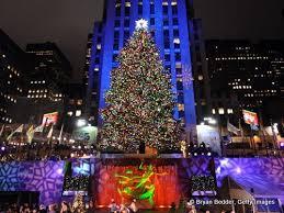 new york city tree lighting rainforest islands ferry