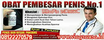 pt vimax indonesia vimax pills pt vimax indonesia