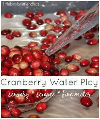 69 best thanksgiving sensory activities images on