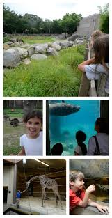 visit providence roger williams park zoo