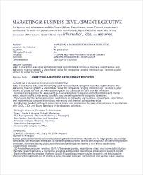 Bank Sales Executive Resume Executive Resume Examples 24 Free Word Pdf Documents Download