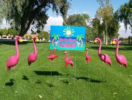 pink plastic flamingos and skelemingos make great gifts