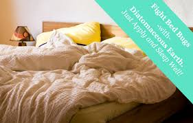 What Do Bed Bugs Eat Diatomaceous Earth Natural Bed Bug Control