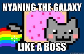 Cat Rainbow Meme - nyan cat images like a boss wallpaper and background photos 25908276