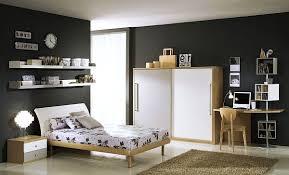 Teenage Boys Rooms Inspiration  Brilliant Ideas - Color ideas for boys bedroom