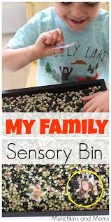 my family sensory bin preschool themes sensory activities and