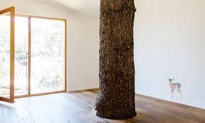 modern architects reinterpret the treehouse smart magazine