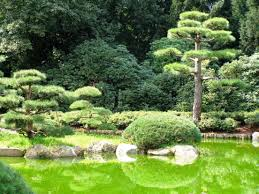 small japanese garden small japanese gardens riothorseroyale homes finest japanese