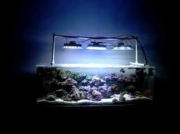 Led Aquarium Light Fixtures Diy Cree Xpg And Xpe Led Aquarium Light Pt 2