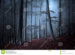 romantic halloween background dark halloween woods background with twisted trees stock