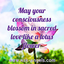 Flower Love Quotes by May Your Consciousness Blossom In Sacred Love Like A Lotus Flower