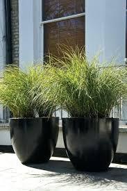 large planter pot www affirmingbeliefs