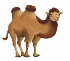 cartoon camel u2014 stock photo agaes8080 40600889