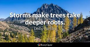 roots quotes brainyquote