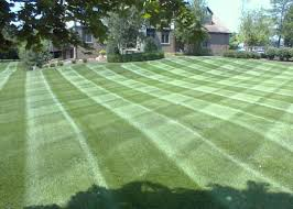 Superior Lawn And Landscape by Superior Lawn Care U0026 Snow Removal