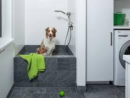 dog bath in laundry room good bc no escape except front dream