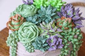 succelents succulent cake buttercream piping tutorial