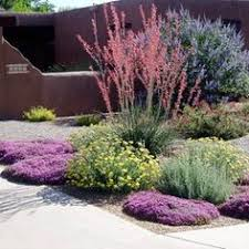11 gorgeous drought friendly landscapes landscaping gardens and