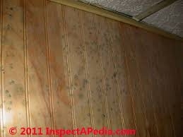 Wood Beadboard - mold on fruit around the house such as oranges mold on osb board