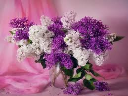 modern style flower bouquets with beautiful white purple flower