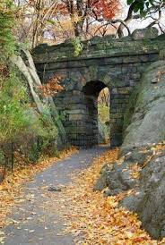 central park thanksgiving best 10 new york thanksgiving ideas on pinterest weekend new