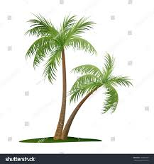 vector illustration two palm trees stock vector 126966755