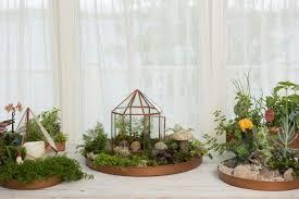Indoor Garden Supplies - great tools for indoor gardening diy network blog made remade