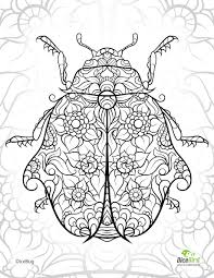dicebug ladybug free coloring pages to print