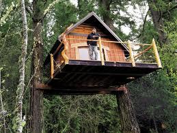 three house goat island tree house partners turn to kickstarter to raise funds