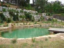 Backyard Swimming Ponds by Building A Pond Oasis Sand Backyard Swimming Pool Pond And