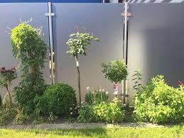 glaszaun für garten und terrasse glasprofi24