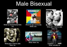 Bisexual Memes - male bisexuals by pieman155 on deviantart