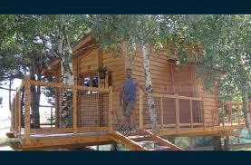 chambre d hote dans les arbres rhône monts du lyonnais une chambre d hôte dans les arbres