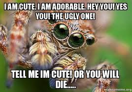 Cute Spider Meme - i am cute i am adorable hey you yes you the ugly one tell me
