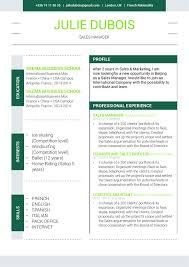 Best Resume Font Size For Calibri by Environmentalist Mycvfactory