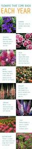 Easy Herbs To Grow Inside 17 Best Images About Garden On Pinterest Gardens Fall Flowers