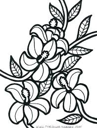 coloring pictures of hibiscus flowers free printable hibiscus flower coloring pages tropical flowers flo