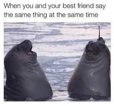 Funny Best Friends Memes - friendship memes 26 funny friend memes to send to your bestie