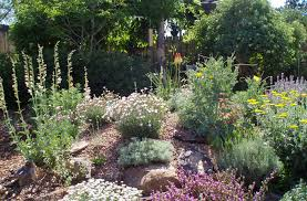 waterwise landscapes inc rock gardens page 1