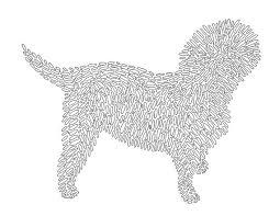 affenpinscher group dog coloring page affenpinscher art dog wall decor dog by inklets