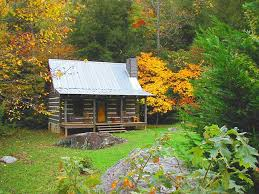 log cabin in the woods plan to do a lot of these things if not