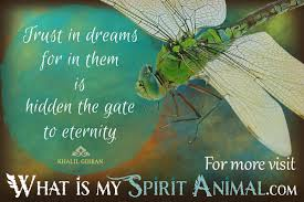 quotes about leadership and dance dragonfly quotes u0026 sayings animal quotes u0026 sayings