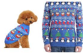 pet sweaters top 10 splendiferous pet sweaters