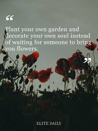 Flower And Love Quotes - best 25 quotes about loving yourself ideas on pinterest