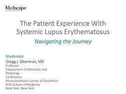 Kpi Reports Sle by The Patient Experience With Systemic Lupus Erythematosus