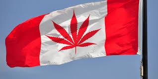 Colorado Flag Marijuana Buy Cannabis Part 2