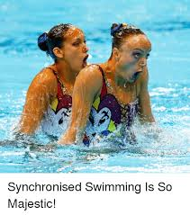 Synchronized Swimming Meme - 25 best memes about synchronised swimming synchronised