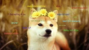Shiba Meme - funny shiba inu meme yahoo image search results such shibe